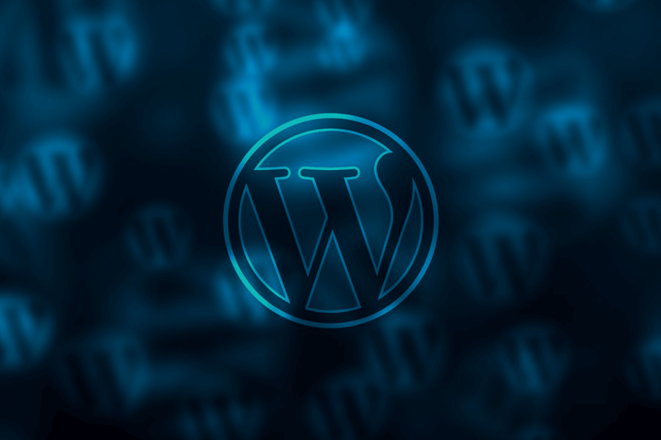 "WordPress: Is the ""do it yourself"" approach the best way?"